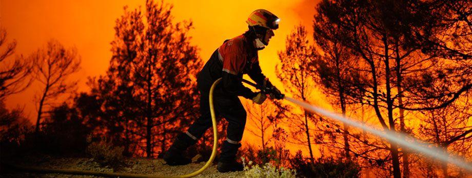 Incendios Forestales y Reforma del Código penal